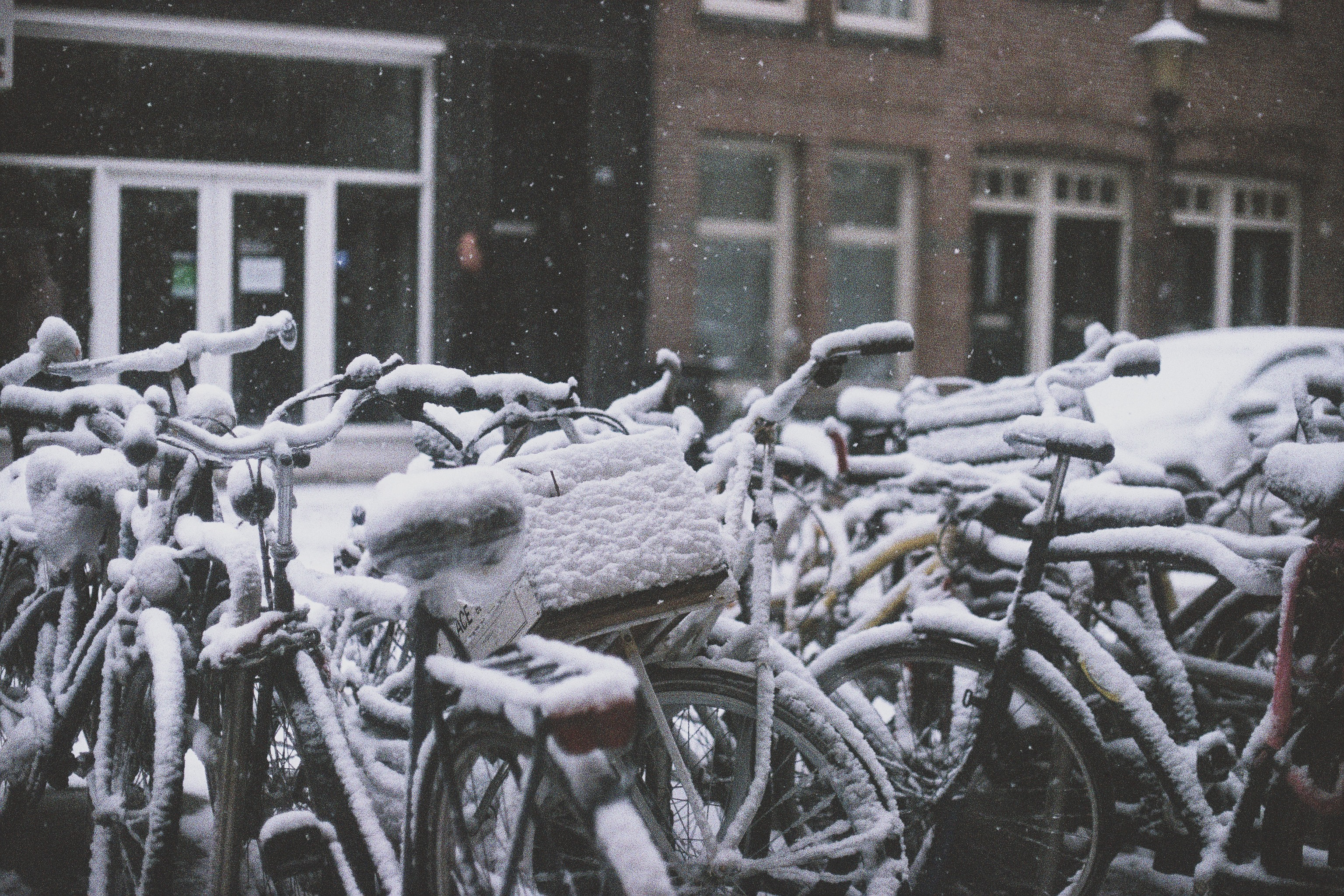 Bicycles and Beer: A Winter Escape to The Netherlands